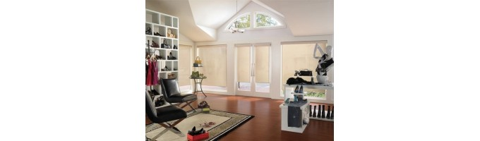 Transparent Roller Shades